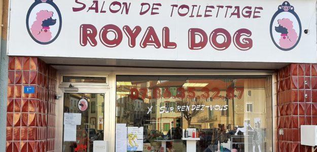 ROYAL DOG